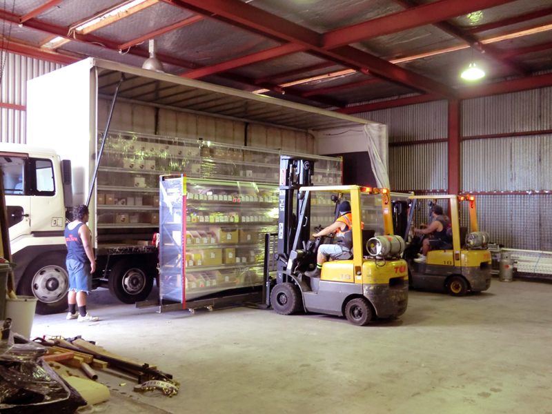 forklifts moving shelfs