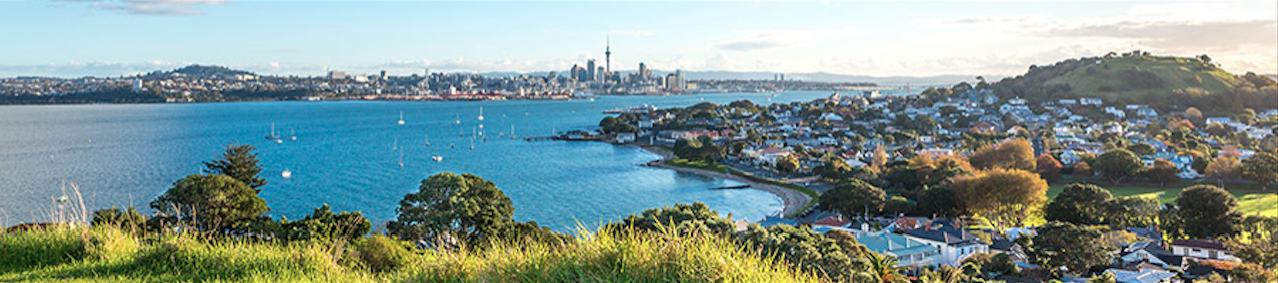 auckland office mover